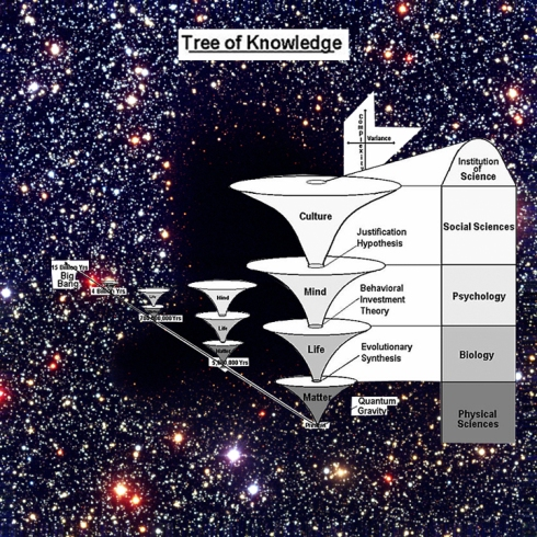 TREE OF KNOWLEDGE/ ENERGY >>MATTER >> LIFE >> MIND >> CULTURE