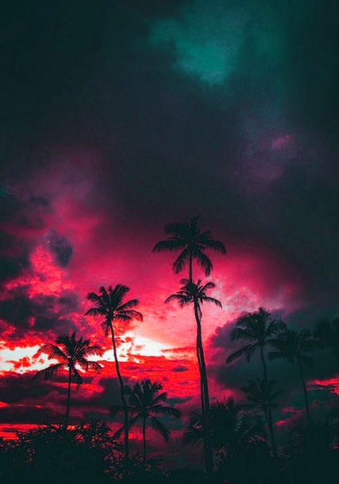 SETTING SUNS